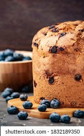 close-up of a panettone and blueberry, selective focus and copy space