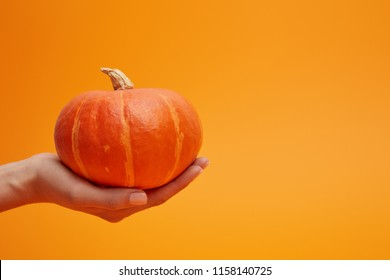 close-up partial view of woman holding ripe fresh pumpkin on orange