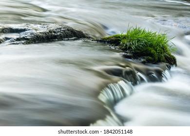 A closeup of a patch of grass growing among the moving water at Shohola Falls, Pennsylvania USA
