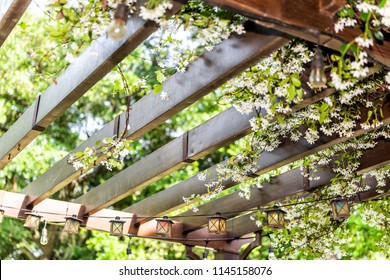 Closeup of patio outdoor spring flower garden in backyard porch of home, zen with pergola canopy wooden gazebo, plants