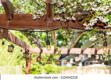 Closeup of patio outdoor spring white flower garden in backyard porch of home, lamps light bulbs, zen with pergola canopy wooden gazebo, plants