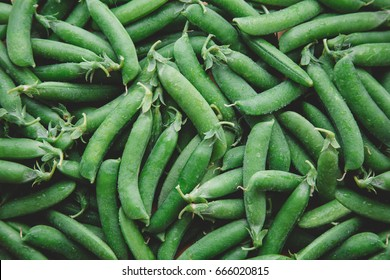 closeup peas harves