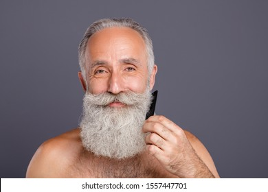 Closeup photo of aged handsome man metrosexual combing neat long beard love himself looking mirror bathroom shirtless isolated grey background