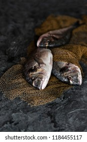 Close-up photo of fresh Dorado fish with net on concreted table background