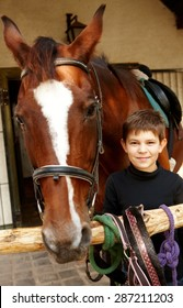 Closeup photo of little boy and horse standing, boy smiling, looking at camera.