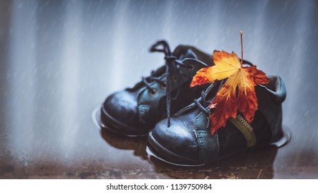 Closeup photo of a small baby boots in the puddle with dry maple leaf on it, waterproof child's shoes, autumn season concept