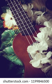 closeup photo of a ukulele against an exotic background