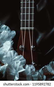 closeup photo of a ukulele neck with a white flower garland