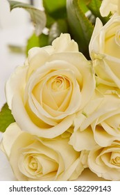 A close-up photo of white roses
