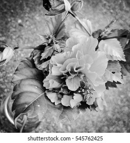 A close-up photograph of a small bunch of rose-like flowers with a black and grey filter added for artistic appeal.