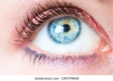 Closeup picture of beautiful rouged eyes, make-up