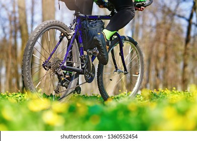 Closeup picture of a bicycle at the flower meadow