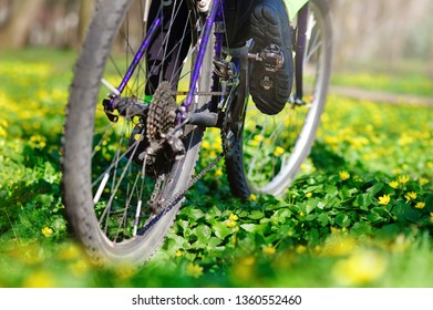 Closeup picture of  cross country bicycle wheels at the spring meadow