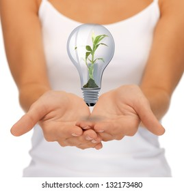 closeup picture of hands with green light bulb