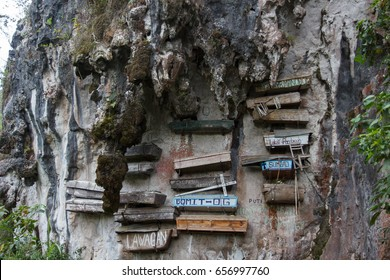 Close-up picture of a mountain-wall with some hanging coffins, Sagada, Luzon, Philippines