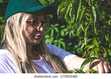 Closeup picture of woman in fruit orchand.
