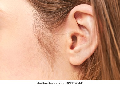 closeup picture of young woman ear
