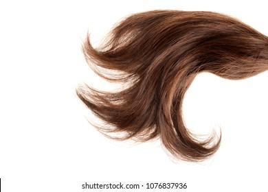 closeup piece of brown hair