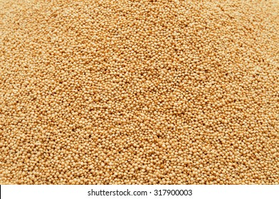 closeup of a pile of amaranth seeds