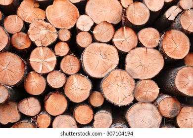 closeup of a pile of cut timber