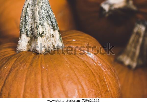 A closeup of a pile of pumpkins for sale.