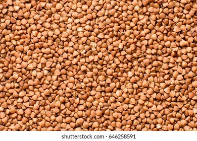 Close-up pile of uncooked buckwheat grains texture background.