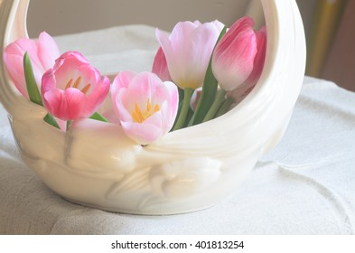 closeup to pink tulip flowers