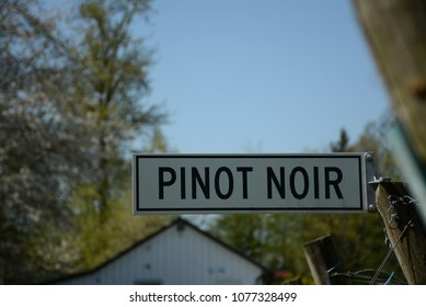 Closeup of Pinot Noir sign , outdoors ,blurred background.