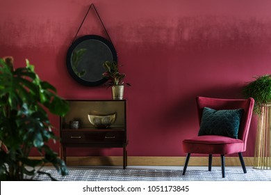 Close-up of a plant in sitting room interior with red armchair, retro cupboard, round mirror and dark red wall