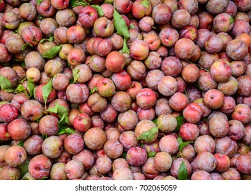 Close-up of plum fruits at the rural market in Northern Vietnam.
