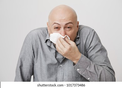 Close-up portrait of bald man sneezing and wiping nose with napkin or tissue while having allergy or runny nose, standing over gray background. Guy got sick but still has to go to work today