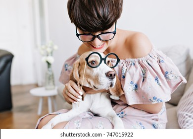 Close-up portrait of beagle dog with big sad eyes and cheerful girl with short haircut holding glasses. Indoor photo of young woman in pretty pink dress hugging her pet with smile.