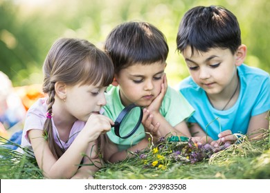 closeup portrait of cute kids with magnifying glass outdoors