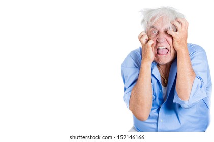 A close-up portrait of an elderly, desperate, mad, looking crazy, desperate man, pulling out his hair, isolated on a white background with copy space. Extremes of human emotions.