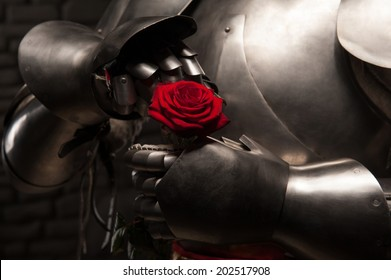 Closeup portrait of medieval knight in armor holding red rose on dark background, romance concept