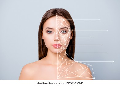 Close-up portrait of nice lady pure perfect flawless smooth shine clean clear skin lines showing marked divided different parts places after plastic surgery isolated over pastel gray background
