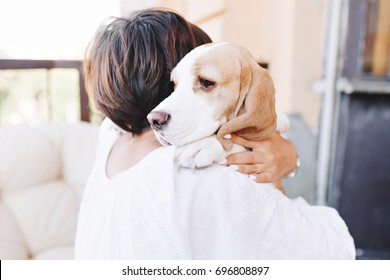 Close-up portrait of sad beagle dog looking away over shoulder of brunette girl. Woman in white attire with short brown hair holding big puppy and carrying him home.