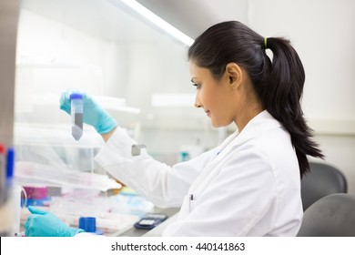 Closeup portrait, scientist holding 50 mL conical tube with blue liquid solution, laboratory experiments, isolated lab background. Forensics, genetics, microbiology, biochemistry