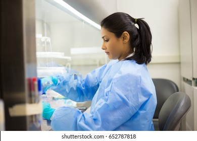 Closeup portrait, scientist pipetting from 50 mL conical tube with blue liquid solution, performing laboratory experiments, isolated lab . Forensics, genetics, microbiology, biochemistry