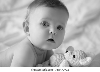 Close-up portrait of a six-month-old Caucasian-type baby boy looking at the photographer with his teddy bear. White background, neutral expression, open mouth