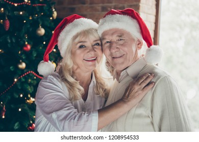 Close-up portrait of two cheerful lovely cute charming beautiful sweet tender dreamy grey-haired married spouses granny granddad hugging near fir tree meeting date