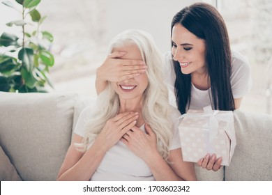 Close-up portrait of two nice attractive lovely cute careful cheerful cheery women granddaughter giving giftbox to granny sitting on divan daydream in light white interior room house flat apartment