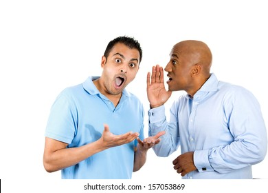 A closeup portrait of two young men, one whispering to another a secret, who is shocked, and very surprised, with wide opened mouth, isolated on white background. Human emotions and facial expressions