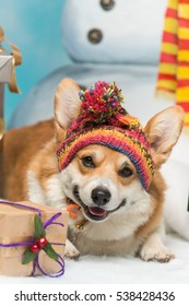 A closeup portrait of a welsh corgi pembroke sitting next to a snowman and a pile of gifts
