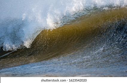 A closeup of a powerful ocean wave under the evening sunlight.