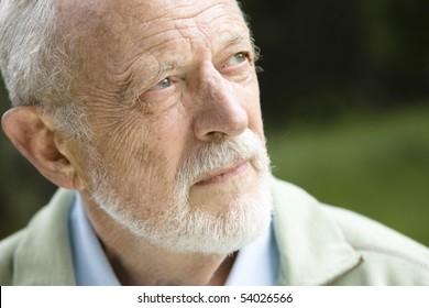 Closeup Profile on an Old Man With a Grey Beard