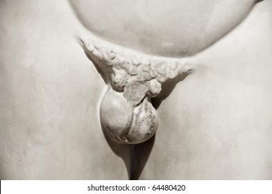 closeup of the pubis of a classic statue