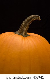 Closeup of Pumpkin on black background.  Shallow focus on base on stem.  Vertical orientation with room for copy.