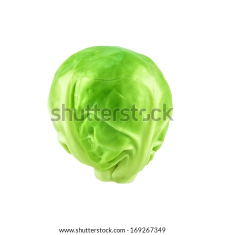 Close-up of raw brussel sprout