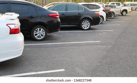 Closeup of rear, back side of black car and  other cars parking in outdoor parking lot with natural background in twilight evening. The mean of simply transportation in modern world.